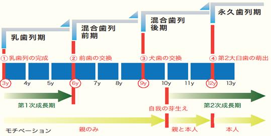 治療開始時期の4つの分類