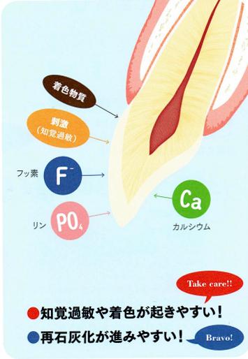 ホワイトニング後の歯の状態