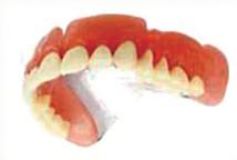 純チタン床義歯
