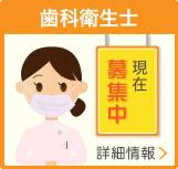 歯科衛生士の求人情報