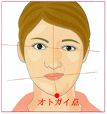 偏咀嚼による顔貌の変化