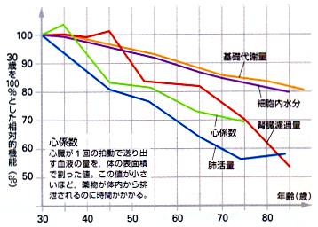 加齢にともなう体質の変化