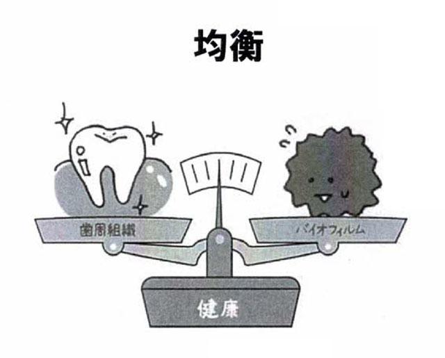 歯周組織とバイオフィルムのバランスが取れた状態(健康)